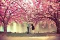 Picture autumn, trees, love, nature, girls, mood, romance, beauty, kiss, friendship, guys, relationship, nostalgia, heat, kisses