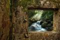 Picture view, window, wall, waterfall, topics, forest