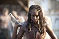 Picture The walking dead, the series, Michonne, look, The Walking Dead, Michonne, Danai Gurira, Danaus Gurira, ...