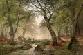 Picture figure, forest, stream, trees, deer, stones