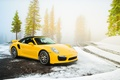 Picture Supercar, Supercar, Road, Porsche, Porsche, Spruce, Yellow, 2014, Turbo S, Cabriolet, Spruce, Snow, 991, Yellow, ...