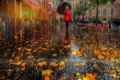 Picture autumn, in red, girl, foliage, Saint Petersburg, street, Peter, the city, umbrella