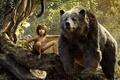 Picture Boy, Bear, Movie, The ball, Mowgli, The Jungle Book, The jungle book