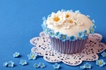 Picture background, flowers, cupcake