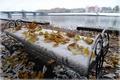 Picture bridge, chestnuts, leaves, October, autumn, Tver, Volga, landscape
