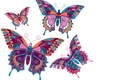 Picture vector, butterfly, background