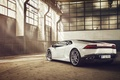 Picture White, Lamborghini, LP610-4, Rear, Supercar, 2014, Huracan