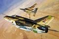 Picture war, aviation art, Grumman F-14 Tomcat, paintng, Mig-21 MF JAY Fighter