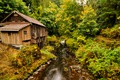 Picture USA, forest, autumn, stream, path, water mill, Washington, the bushes, trees, stones, Etna