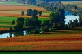 Picture field, river, nature