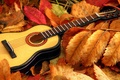 Picture guitar, music, leaves