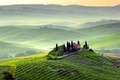 Picture greens, trees, landscape, nature, fog, dawn, hills, field, morning, Italy, Italy, Tuscany, Toscana, Pienza, Pienza, ...