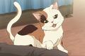 Picture cat, suzumiya haruhi no yuutsu, guy