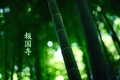 Picture forest, bamboo, characters, 1920x1200, by burningmonk, green colour