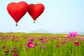 Picture flowers, Heart shaped, balloons