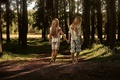 Picture GREENS, GIRLS, GRASS, PAIR, WALK, ROAD, HAIR, FOREST, TRAIL