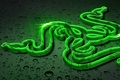 Picture Logo, Razer Speed, Black, Wallpaper, Green, Razer, Hi-Tech, White, Art