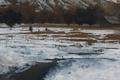 Picture landscape, river, trees, hill, hut, snow, kirk tatom