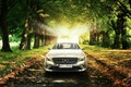 Picture AMG, Leaves, Trees, CLA, Grass, Premium, Trees, Grass, Car, Leaves, Car, Mercedes-Benz, Sun, Premium, Class, ...