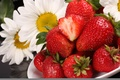 Picture chamomile, red and white, strawberry