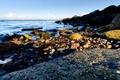 Picture sea, shore, stones