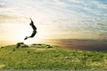 Picture joy, the sky, grass, Jump