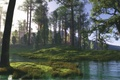 Picture art, trees, water, hills, the sun, swamp, pond, forest