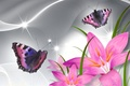 Picture flowers, petals, collage, butterfly, Lily