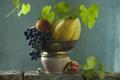 Picture shell, grapes, peach, melon