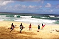 Picture beach, girls, the ocean, surfing