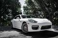 Picture Porsche, Panamera, white, egarage