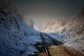 Picture morning, landscape, nature, railroad