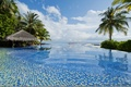 Picture the ocean, palm trees, pool