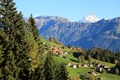 Picture Switzerland, field, Beatenberg, slope, mountains, home, trees