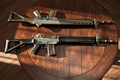 Picture weapons, SIG, Swiss automatic, SG 550, Swiss Arms