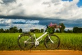 Picture bike, bicycle, wheel, widescreen, HD wallpapers, Wallpaper, leaves, greens, full screen, background, fullscreen, widescreen, mood, ...