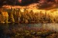 Picture Nature, Autumn, Lake, Switzerland, Forest