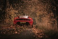 Picture autumn, leaves, 430 Scuderia