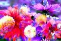 Picture flowers, Bud, rendering, paint, petals, line