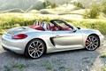 Picture Porsche, Boxster, Porsche, 2012, car
