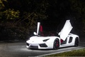 Picture aventador, tuning, lamborghini, LB834, face, white, wheels, italy, power, front