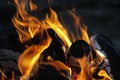 Picture flames, macro, background, Wallpaper, the fire, coal, flame, wood, fire