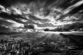 Picture Hong Kong, dawn, black and white, neboskreby, clouds