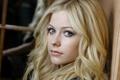 Picture look, singer, Avril Lavigne, Avril Lavigne