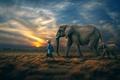 Picture the sky, people, horizon, elephants
