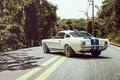 Picture Shelby, Car, Ford, Muscle, Oil, GT350R, Auto, Shelby, Kar, Road, Ford