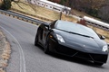 Picture Superleggera, Lamborghini, gallardo, Lamborghini, black, road, trees, bump, black, Gallardo, LP570 Superleggera