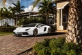 Picture palm trees, aventador, Lamborghini, Lamborghini, LP700-4, before, Aventador, white, mansion, white, front, Lamborghini