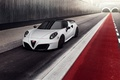 Picture Alfa Romeo, Alfa Romeo, Pogea Racing