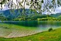 Picture mountain, lake, greens, summer, Bohinj, trees, Slovenia